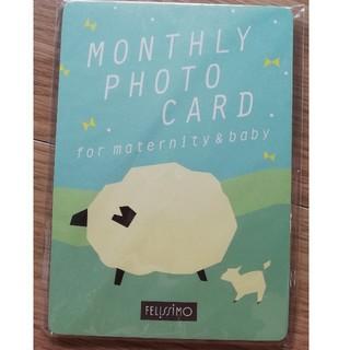 フェリシモ(FELISSIMO)のマンスリーフォト用カード(その他)