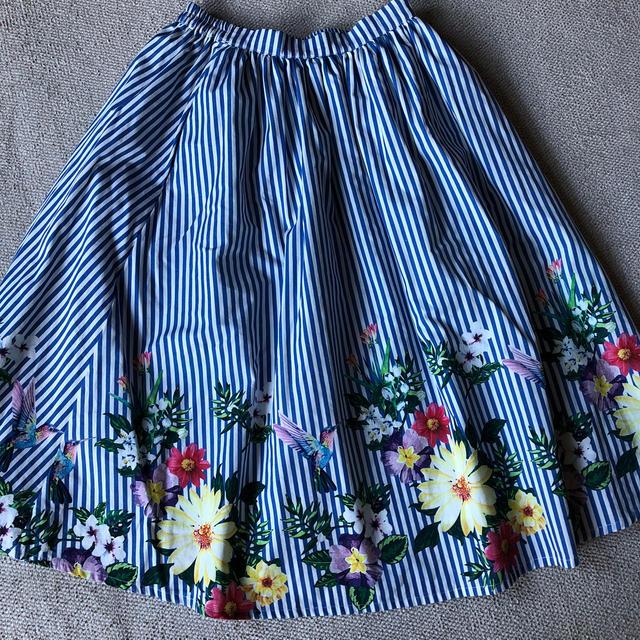 Chesty(チェスティ)の美品プレミィコロミィ   鳥スカート ハチドリ インコ オウム レディースのスカート(ロングスカート)の商品写真