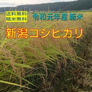 農家直送!新潟コシヒカリ玄米30kg