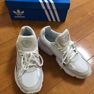 アディダス(adidas)のadidas FALCON アディダス ファルコン白25㎝(スニーカー)
