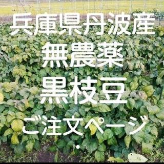 無農薬 黒枝豆 兵庫県丹波産(野菜)