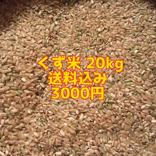 くず米 20kg  ☆送料無料☆(鳥)