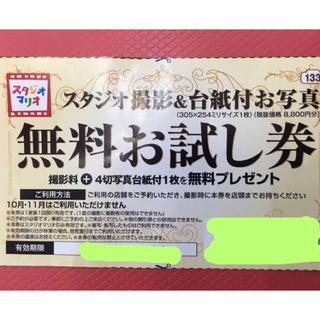 Kitamura - スタジオマリオ無料お試し券