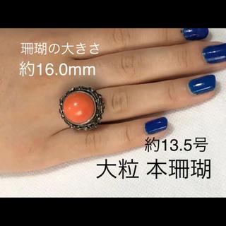 大粒✨ヴィンテージ  天然本珊瑚シルバーリング 約13.5号(リング(指輪))