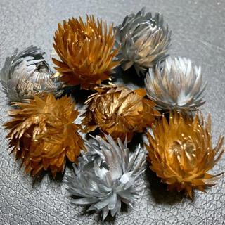 ミニシルバーデージー クリスマス花材 8輪 ゴールド シルバー (ドライフラワー)