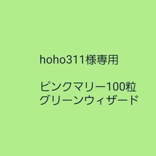 hoho311様専用【フレンチマリーゴールド】ローズピンク 種子30粒(その他)