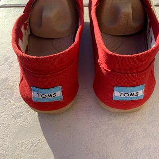 TOMS - TOMSスリッポン デッキシューズ