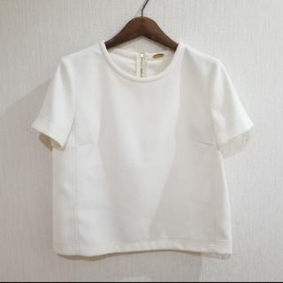 DEUXIEME CLASSE - MUSE バックジップTシャツ