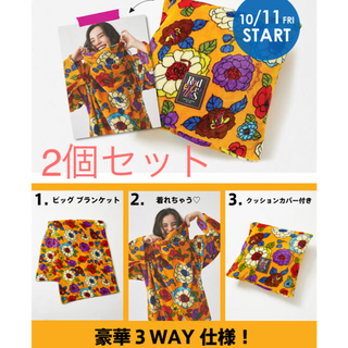 RODEO CROWNS WIDE BOWL - 3way ブランケット2個セット