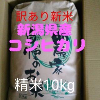 【連絡版】新潟県長岡産新米コシヒカリ訳あり小粒10kg精米 お買い得!