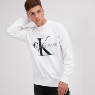 Calvin Klein - 【希少デザイン】カルバンクライン ロゴトレーナー