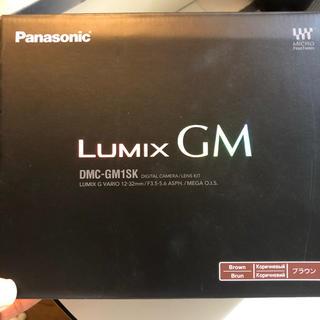Panasonic - Panasonic Lumix GM