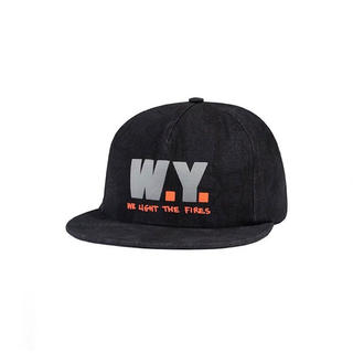 verdy babylon la wasted youth cap