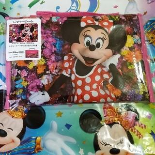 Disney - Imagining the magic  ミニーちゃん レジャーシート