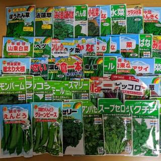 【野菜・花の種】ほうれん草など6種類セット!!(野菜)