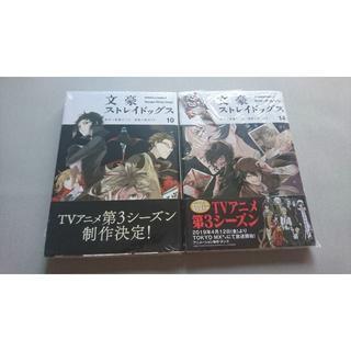 角川書店 - 文スト 文豪ストレイドッグス 漫画 10巻&14巻セット