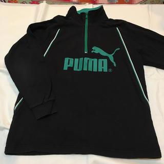 PUMA - プーマ トレーナー 150 男の子