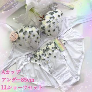 A85LL♡キャンディフラワー白♪ブラ&ショーツ 大きいサイズ(ブラ&ショーツセット)