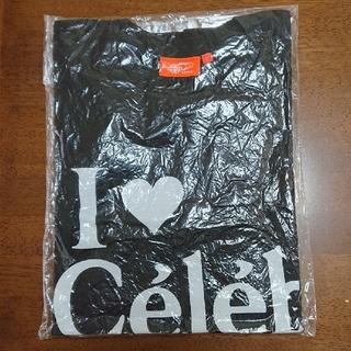 ビームス(BEAMS)の槇原敬之セレブレーション2005Tシャツ(ミュージシャン)