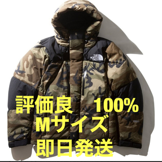 THE NORTH FACE - 2019 THE NORTH FACE ND91951 バルトロライトジャケット