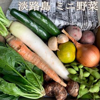 淡路島【 コンパクト 】ミニ野菜