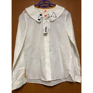 メルロー(merlot)の新品 メルロー くま襟 ブラウス シャツ S クマ 熊(シャツ/ブラウス(長袖/七分))