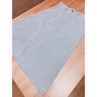 メルロー(merlot)のメルロー スカート★(ひざ丈スカート)