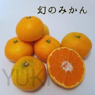 【幻のみかん】肥のあけぼの10kg