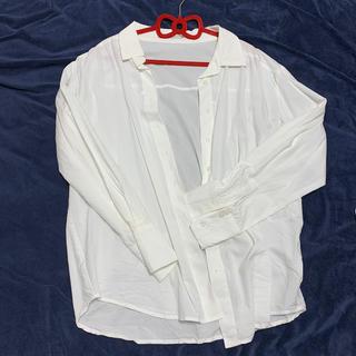 ムルーア(MURUA)のワイシャツ ムルーア 美品 秋服(シャツ/ブラウス(長袖/七分))