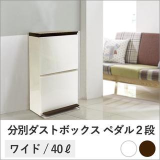 分別ダストボックス ペダル2段ワイド 40L tsk | ゴミ箱 ごみ箱 ダスト
