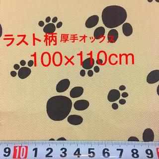 生地 1428🐾厚手オックス 肉球柄 茶色 100×110cm
