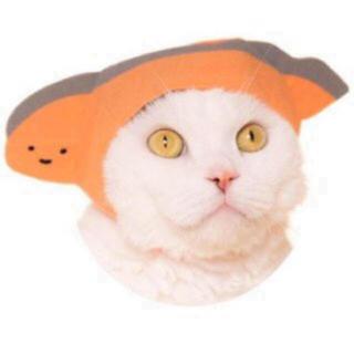 サンリオ - 【新品】猫かぶりもの❤︎切り身ちゃん❤︎