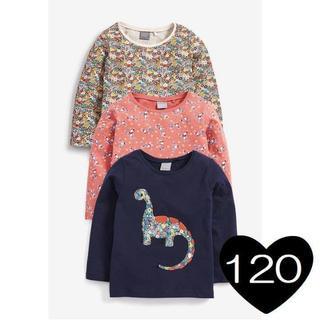 ネクスト(NEXT)の*120*恐竜&小花 Tシャツ 3 枚組(Tシャツ/カットソー)