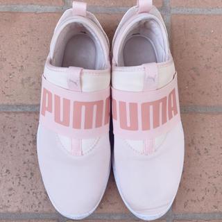 プーマ(PUMA)の本日限定 レア pink shoes(スニーカー)