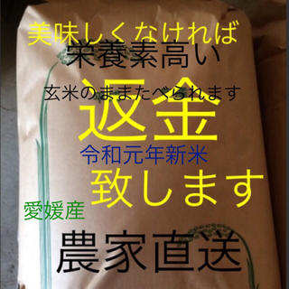 令和元年最高級 新米純 こしひかり25㎏ 玄米 有機栽培