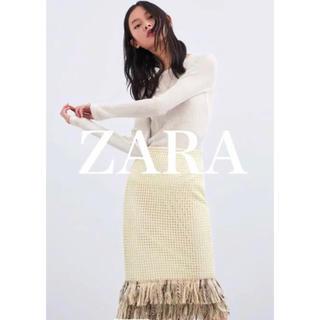 ザラ(ZARA)の【ZARA】未使用 メッシュテクスチャー スカート(ひざ丈スカート)