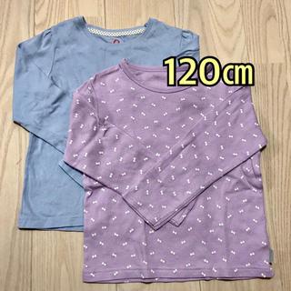 ベルメゾン(ベルメゾン)のカットソー2枚組 120(Tシャツ/カットソー)