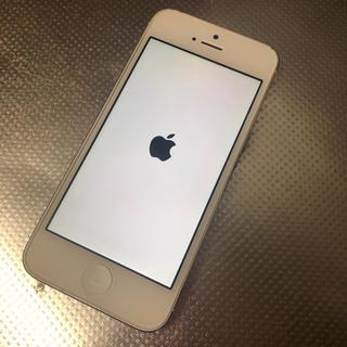 iPhone - iPhone5 White16GB au