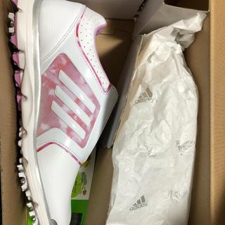 adidas - アディダス ゴルフシューズ 24cm 新品
