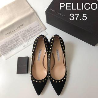 PELLICO - 極美品 ★ ペリーコ スタッズパンプス ★ アンドレア スエードパンプス