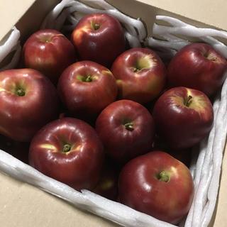 青森県産りんご 紅玉 10キロ以上