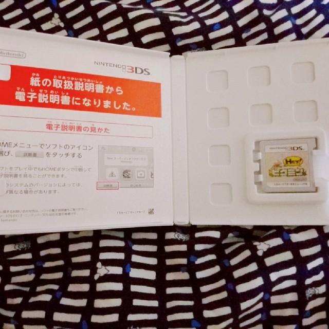 ニンテンドー3DS(ニンテンドー3DS)のhey!ピクミン エンタメ/ホビーのゲームソフト/ゲーム機本体(家庭用ゲームソフト)の商品写真
