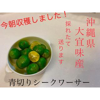 無農薬! 沖縄県 大宜味 青切り シークワーサー ノビレチン 認知症予防 1kg
