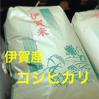 令和元年度 三重県 伊賀産コシヒカリ 玄米 新米100%