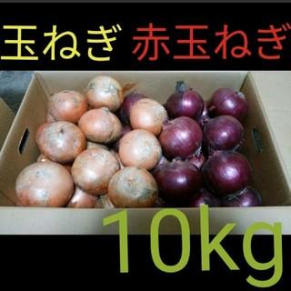 北海道産 減農薬 玉ねぎ 赤玉ねぎ ミックス