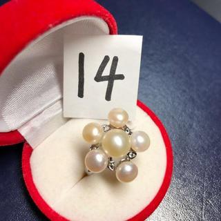 新品 pt プラチナ 本物 真珠 リング 指輪 サイズ: 14号(リング(指輪))