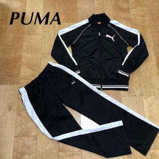 PUMA - ★ PUMA プーマ ジャージ 上下 セット レディース 上L 下M 長袖