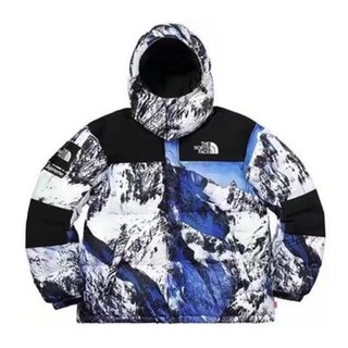 Supreme - Supreme 17AW/FW The North Face Mountain
