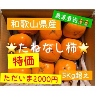 ⭐️たねなし柿⭐️ 和歌山県産 5kg+増量1kg‼️最短発送18日以降‼️
