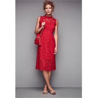 kate spade new york - ケイトスペード ニューヨーク レース ドレス ドレス ワンピース レッド 赤